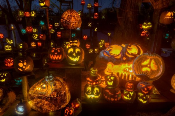 Photo Credit: Louisville Jack O'Lantern Spectacular